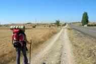 Culture - The Camino: Finding Stillness and Presence