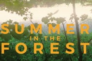 Culture - Summer In The Forest: All Things Beautiful In Their Time